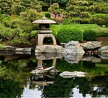 Japanese Garden by Catherine Fenner
