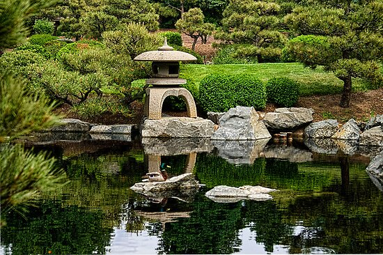 Japanese Garden by Catherine Fenner