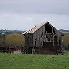 old hay shak - farm land mt gambier by liam mcminn