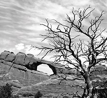 Skyline Arch - Arches National Park by Harry Snowden