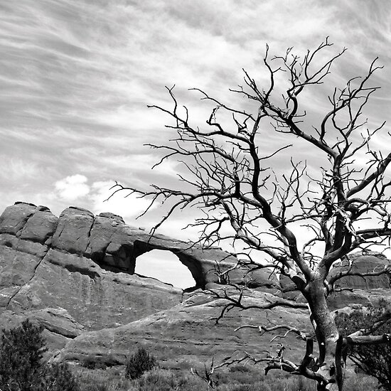 Skyline Arch by Harry Snowden