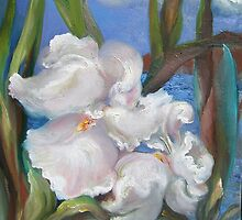 White Iris by Barbara Sparhawk