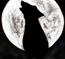 FULLMOON by Dawn B Davies-McIninch