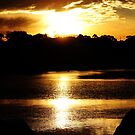 Sunset on the River by Rookwood Studio ©