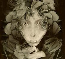 lapse by Cynthia Lund Torroll
