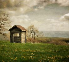 Room With A View by Lois  Bryan