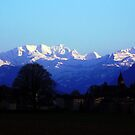 Swiss Alps by Llawphotography