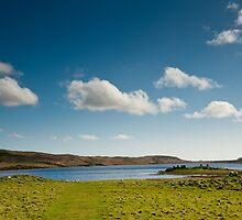 Eilean Mor Loch Finlaggan by Jaime Pharr