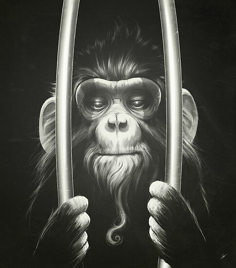 Prisoner II by Lukas Brezak