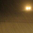 blizzard scene no. 2 by viviangirl