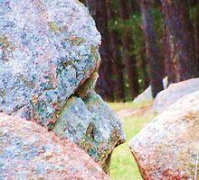 Face In Boulder by margaret walsh
