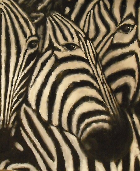 the zebras by ralphyboy