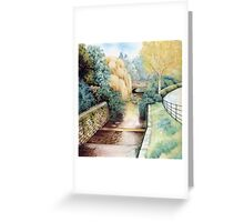 Water Steps, Roath Park, Cardiff. Greeting Card