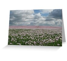 Thundery Poppies Greeting Card
