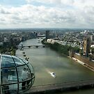 A London Eye&#x27;s View by Sarah Couzens