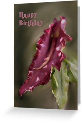 Dragon Arum Birthday Card by Samantha Higgs