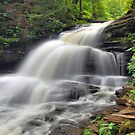 Shawnee Falls - Ricketts Glen by Stephen Vecchiotti