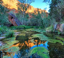 Dales Gorge in the Karijini National Park WA by Alwyn Simple