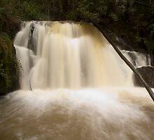 Upper Lilydale Falls by Patrick Reid