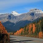 Autumn on the Parkway by Cameron B