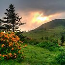 Roan Highlands Morning by Jane Best