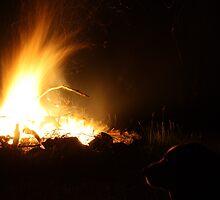 Twisted fire by pennysj
