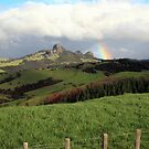 Rainbow over Taratara-Whangaroa by Tony Foster