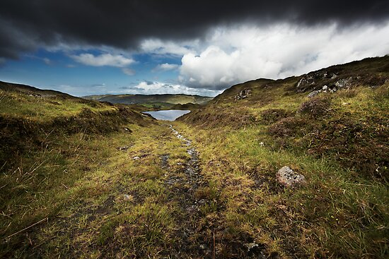 A Path Less Trodden by Andy Freer