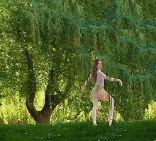 The Willow Ballet by MaureenTillman