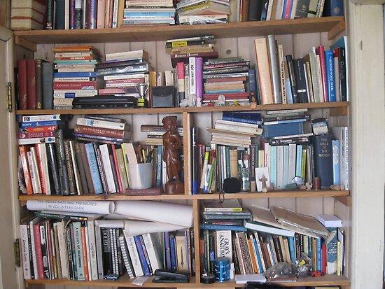 Bookshelf by abigcat