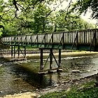 Bridge work by Julesrules