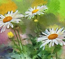 Oxeye daisies - painted by PhotosByHealy