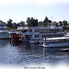 St. Lawrence Seaway/Thousand Islands #8 by Rose Santuci-Sofranko