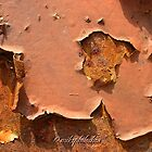 Brown peeling paint 2 by Michele Filoscia