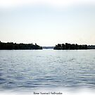 St. Lawrence Seaway/Thousand Islands #32 by Rose Santuci-Sofranko