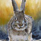 Rabbit by P. Leslie Aldridge
