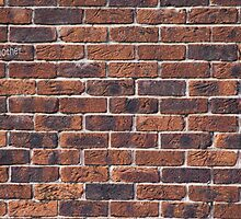 Another Brick in the Wall by Peter Elliott