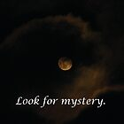 Look for Mystery Everywhere by Deb Fedeler