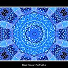Blue Hydrangea Kaleidoscope by Rose Santuci-Sofranko