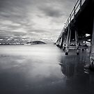 The Jetty by Trish O'Brien