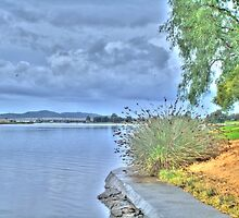 Raymond Terrace Bridge by Scott Mclaren
