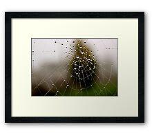 Imagine a multidimensional spider's web... Framed Print