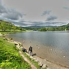 View over Rydal Water by John Hare