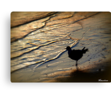 Alone...Watching The Sun Go Down Canvas Print
