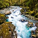Milford Sound River by Stephen Dickson