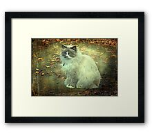 """But Mama ! ...It is so Cold Outside !"" Framed Print"