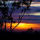 Kaleidoscope of Colours - Toowoomba Qld by Beth  Wode