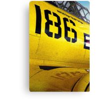 Them's Fighting Numbers Canvas Print