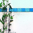 wall with blue tile by Lynne Prestebak