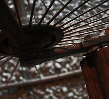 Spokes by Ciaran Sidwell
